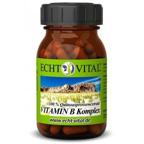 Жизненно важный комплекс витаминов группы B, в баночке 60 капсул. Одна капсула содержит 416 мг витаминов группы В. Из Германии