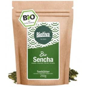 Сенча (Сентя) зеленый чай органический 250 г нормализует уровень сахара в крови, препятствует развитию сахарного диабета. ЗАПАС НА 3-4 МЕСЯЦА! Из Германии