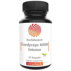 Кордицепс – экстракт гриба, запас на 1,5-2 месяца, используется в лечении болезней почек, сердца, анемии, для лечения депрессии, повышает иммунитет, особенно у пожилых, ИЗ ГЕРМАНИИ