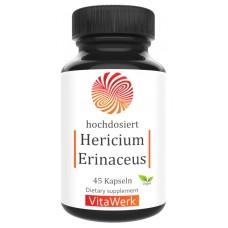 Гриб Герициум или Ежовик Гребенчатый, запас на 1,5-2 МЕСЯЦА, веганский, полезен после инсультов, повреждений мозга, для здоровья кишечника, пищевода, 100% чистота, ИЗ ГЕРМАНИИ